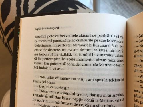 Fericirea îmi scapă printre degete, Agnes Martin – Lugand, recenzie Fericirea imi scapa printre degete, editura trei