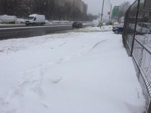 Berceni - drum inzepezit zona pietonala_500x375