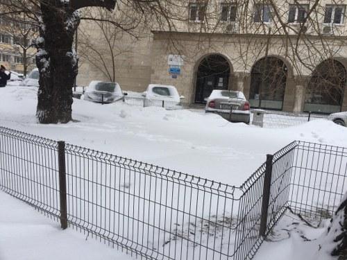 Zăpada, o sursă de bani pentru bugetul de stat 1_500x375